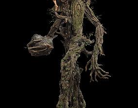 Treebeard 3D print model