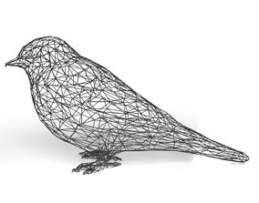 3D asset Swallow Wireframe