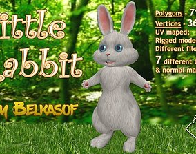 rigged low-poly 3d Character - Little Rabbit