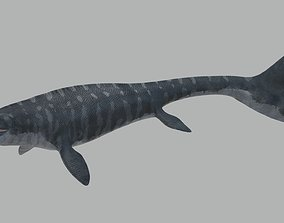 3D model Mosasaurus Hoffmanni Historically Accurate