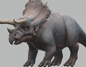 3D asset Triceratops with Animation