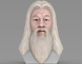 Dumbledore from Harry Potter bust for full color 3D