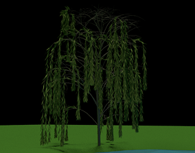 plant Willow Tree 3D model
