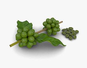 3D model Green Coffee Beans