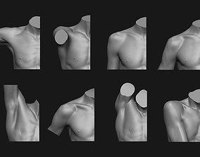3D print model Shoulder Anatomy Set