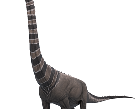 Argentinosaurus Asset Pack 3D model