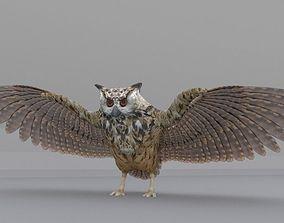 3D model Barn Owl