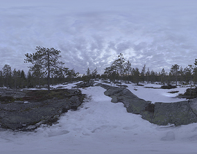 Nature HDRI - Northern Spring Forest 3D