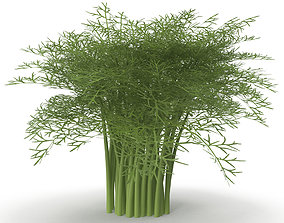 Fennel Bunch 3D model