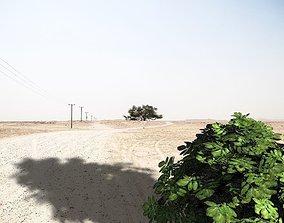 realtime bush 3d