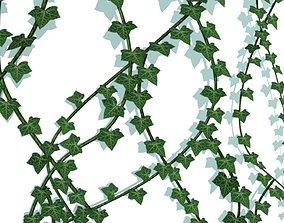 3D asset Ivy Vines Low poly