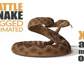 3D model Rattlesnake
