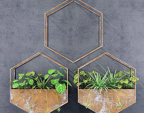 3D Hexagon shelves for plants
