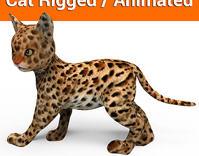 animated 3d Cute cat rigged and aniamted 3d