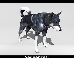3D model animated Husky