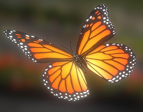 3D model Animated Butterfly
