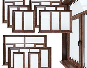 3D model Plastic windows collection