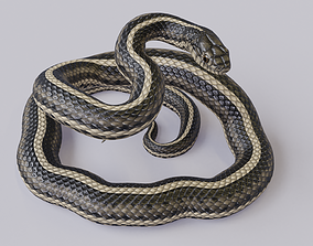 Rigged Garter Snake 3D model game-ready