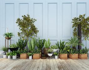 Plants 3D model realtime flora