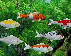 3D model animated koi fish