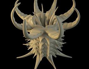 Anemone 3D