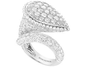 Bucheron Ring 3D print model