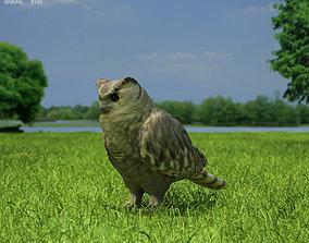 Eurasian Eagle-Owl Bubo Bubo 3D model