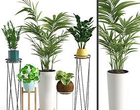 Houseplant 39 3D model PBR