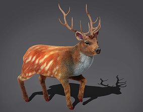 Fur Rigged Deer Stag 3D model