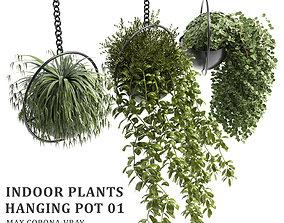 Indoor plants hanging pot 01 3D asset