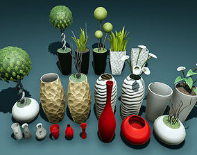 Plants and vases 3D asset