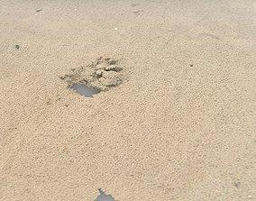 3D model Beach Sand RAW SCAN