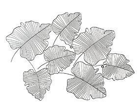 3D Dantone home Pano silver leaf