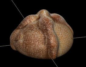 3D pan de muerto