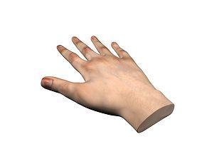 VR Female Hands 3D model