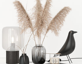 Black decorative set with pampas 3D