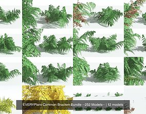 3D EVERYPlant Common Bracken Bundle --252 Models--
