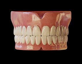 3D model Human Teeth Prosthesis
