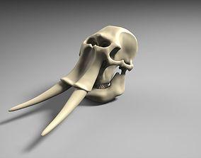 3D printable model mammuthus Elephant Skull