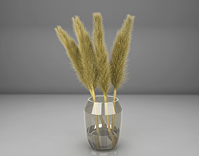pampas grass with vase 3D