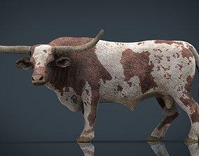 Texas Longhorn 3D model realtime