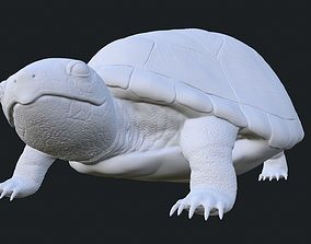Realistic Turtle Toy 3D print model
