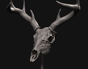 3D print model Deer skull with stand