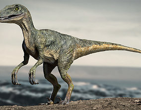 Velociraptor Animated Rigged 3D model animated