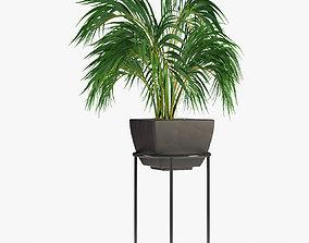 Realistic Plant Garden 3D