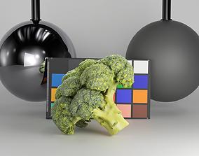 3D model Cob of broccoli 27