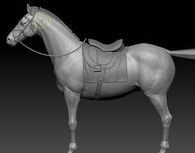 zbrush horse 3D model