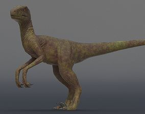 Velociraptor 3D asset animated low-poly