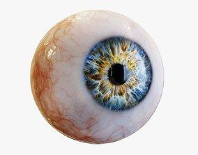 Human eye Photorealistic 3D asset