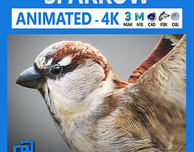 3D Animated Sparrow